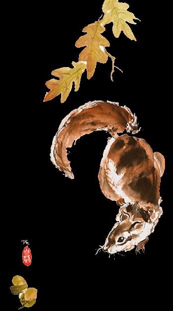 Eichhörnchen Tuschmalerei