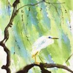 wasservogel reiher